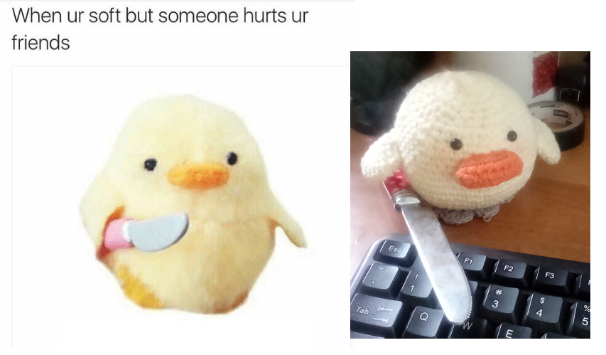 My Girlfriend Tried To Recreate One Of The Funniest Memes We Ve Ever Come Across Me As A Girlfriend Funny Birds Funny Memes
