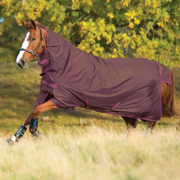 Amigo Hero 6 Plus Heavy Turnout Rug 350g Chocolate Raspberry