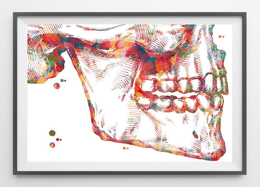 Mandible And Maxilla Anatomy Watercolor Print Corrective Jaw Surgery
