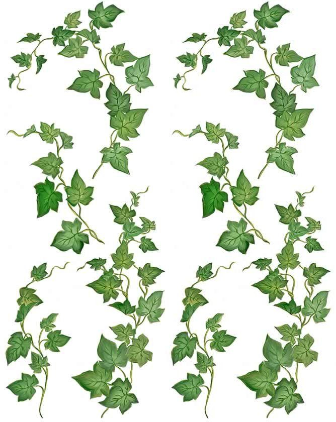 ivy fairy green leaf picture and wallpaper art