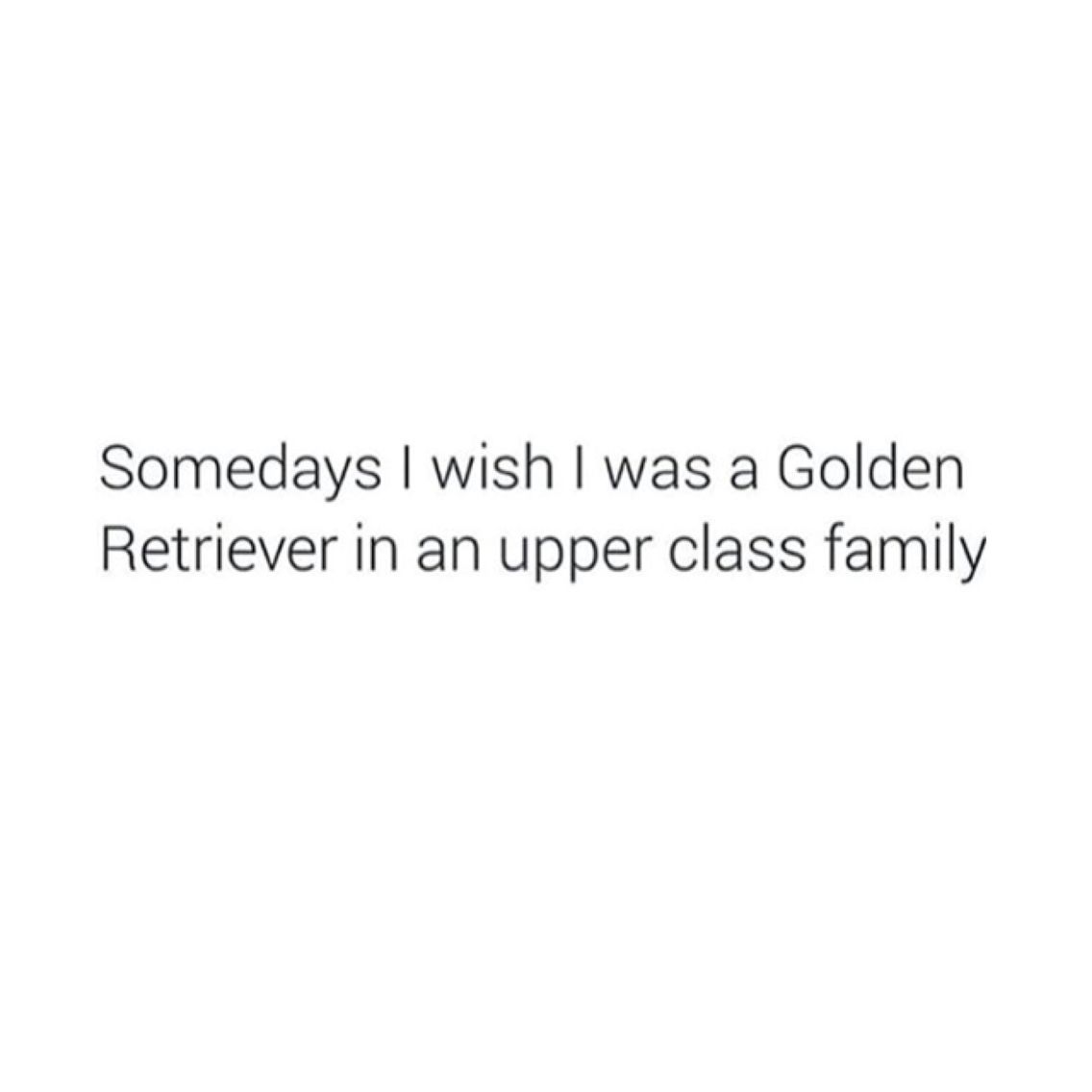 Actually Everyday Golden Lover Blanccomm Blancquotes