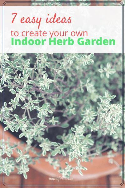 7 Easy Ideas To Help You Create Your Own Indoor Herb Garden For Fresh Herbs  Year Round. #herbs #gardening