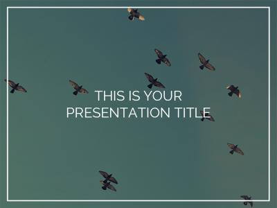 miranda presentation template technology pinterest templates
