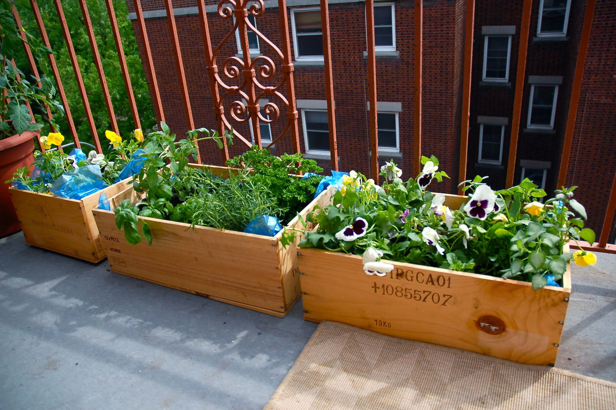 Urban Oasis Balcony Gardens That Prove Green Is Always In 640 x 480
