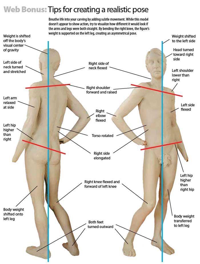a53e3893919bc30284f833b2997d9c00.jpg (700×925)   Anatomy Reference ...
