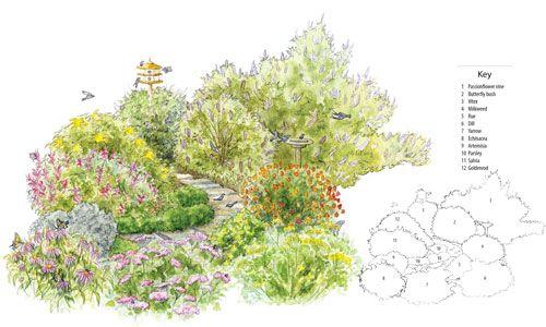 Flower Garden Plans For Butterflies   Google Search