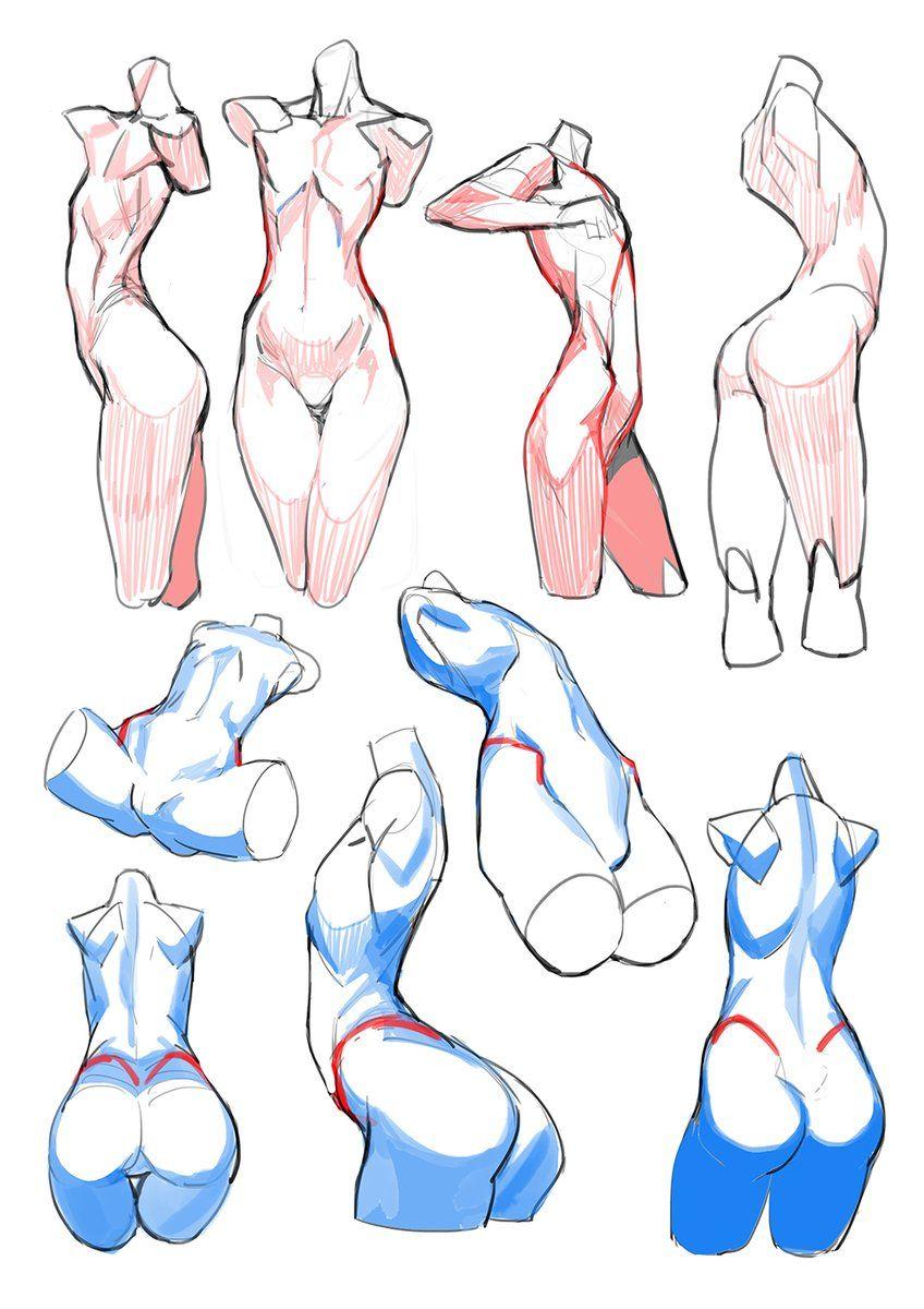 Pin de Emil Sandberg en Character design   Pinterest   Anatomía ...