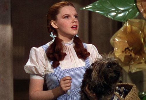 """The iconic blue gingham dress Judy Garland wore in """"The Wizard of Oz"""" has a new owner, who's about half a million dollars poorer in the transaction."""