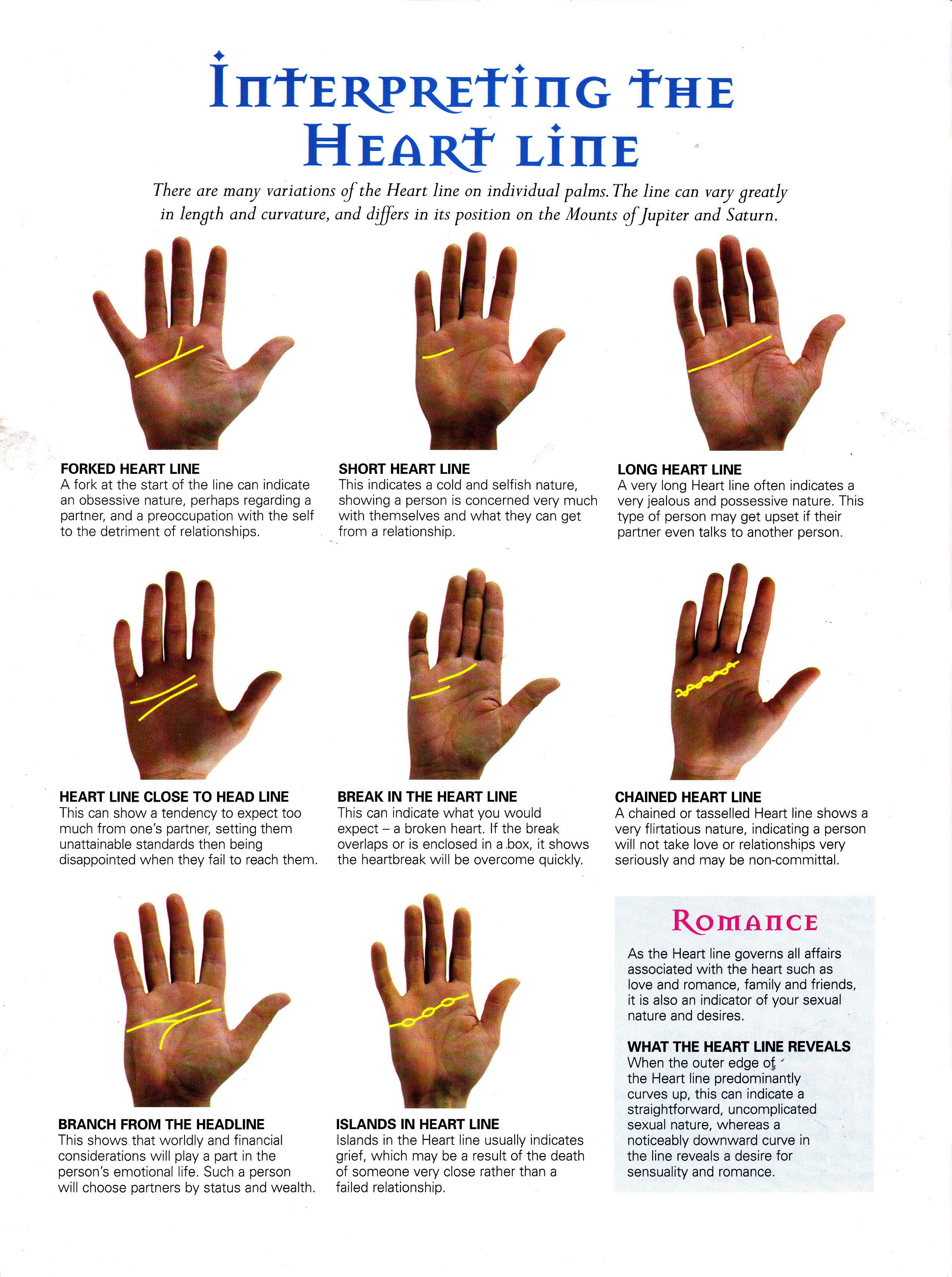 Interpreting the heart line | Palm reading, Palmistry, Tarot reading