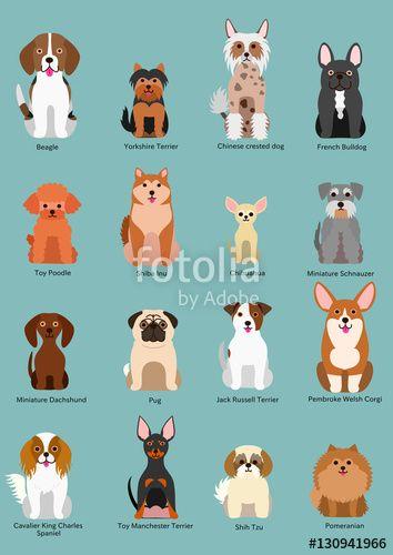 Dogs Clipart おしゃれまとめの人気アイデア Pinterest Kristina Reynolds Haney 小型犬種 犬の品種 犬 種類