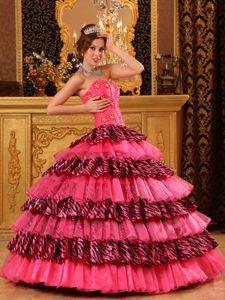 cd8ee4b62b0 Beautiful Sweetheart Zebra Beaded Hot Pink Quince Dresses in Cottonwood