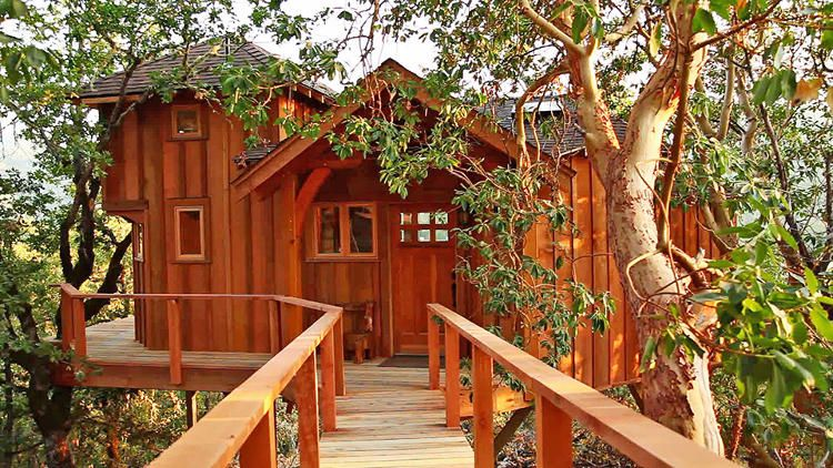 treehouse masters treehouses. Your Childhood Dream Home: The Extreme Treehouses Of \u201cTreehouse Masters\u201d Treehouse Masters T