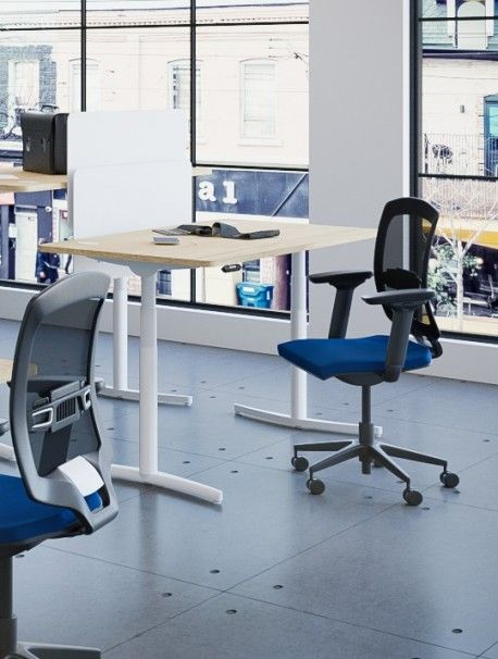 Bureau Assis Debout Reglable Electriquement Envol Delex Mobilier Bureau Reglable Bureau Bureau Reglable En Hauteur