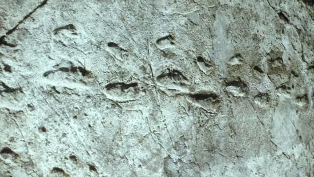 The footprints of the dead have revealed new secrets