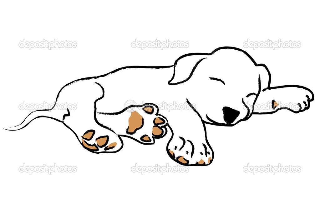 A Black And White Spotted Dog Sleeping On A Rug Description From Fotosearch Com I Searched For This On Bing Com Im Sleeping Drawing Dog Drawing Sleeping Dogs