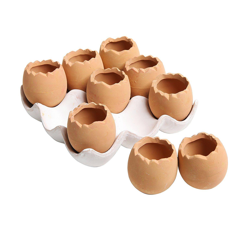 Adorable Set Of 9 Brown Eggs Design Ceramic Succulent Planters Mini Decorative Pots W Tray