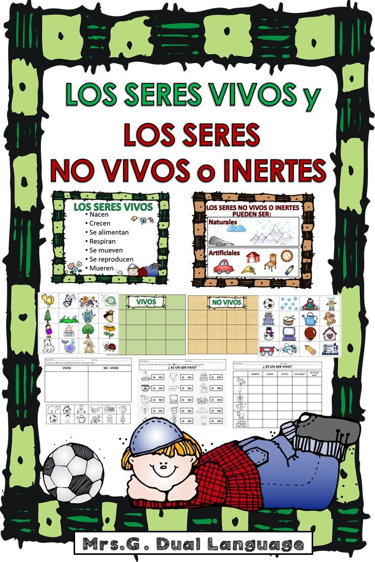 Spanish Living And Nonliving Seres Vivos Y No Vivos Living And Nonliving Bilingual Teaching How To Speak Spanish