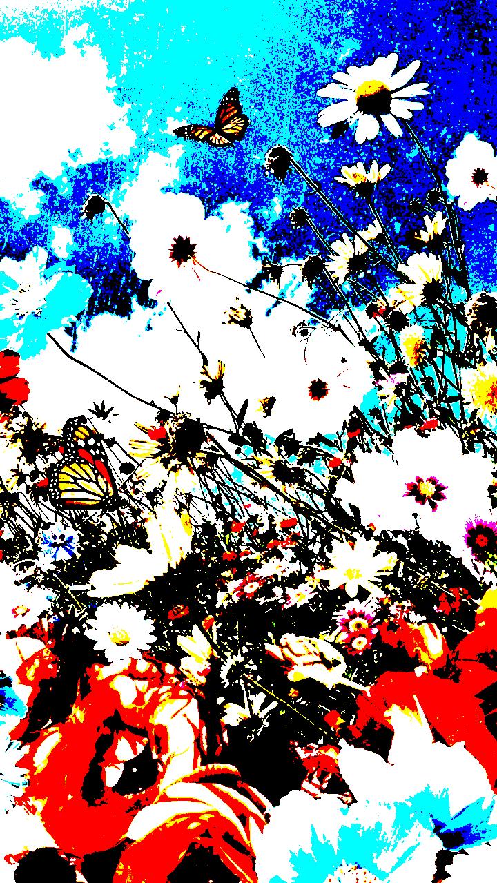 Fleur Fleurs Plantes Botanique Florale Belle Fond D Ecran Fond Nature Voyage Fleurs En 2020 Arriere Plan Arriere Plans Vintage Fond D Ecran Hypebeast