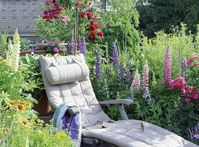 Lauschiges Plätzchen Blühende Sommerpflanzen machen es auf Balkon - garten pflanzen sichtschutz