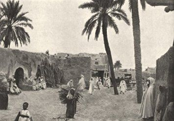 Algeria Biskra Oasis De Sidi Okba Antique Print 1895 In Cheap