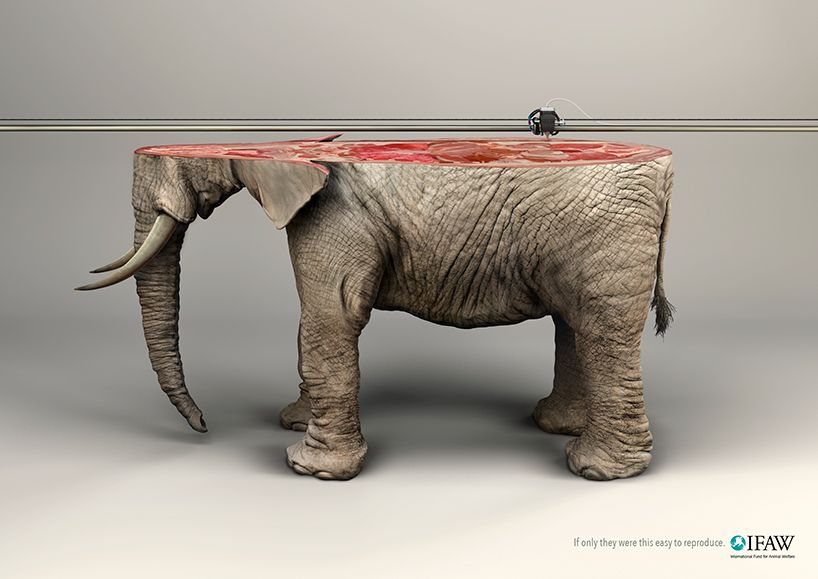 young rubicam IFAW 3D printed animals