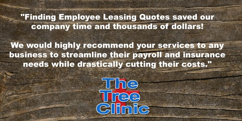 We Arborists And One Of Our Specialties Is Saving Them Money