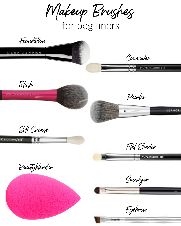 Makeup Brushes for Beginners Makeup brushes, Makeup
