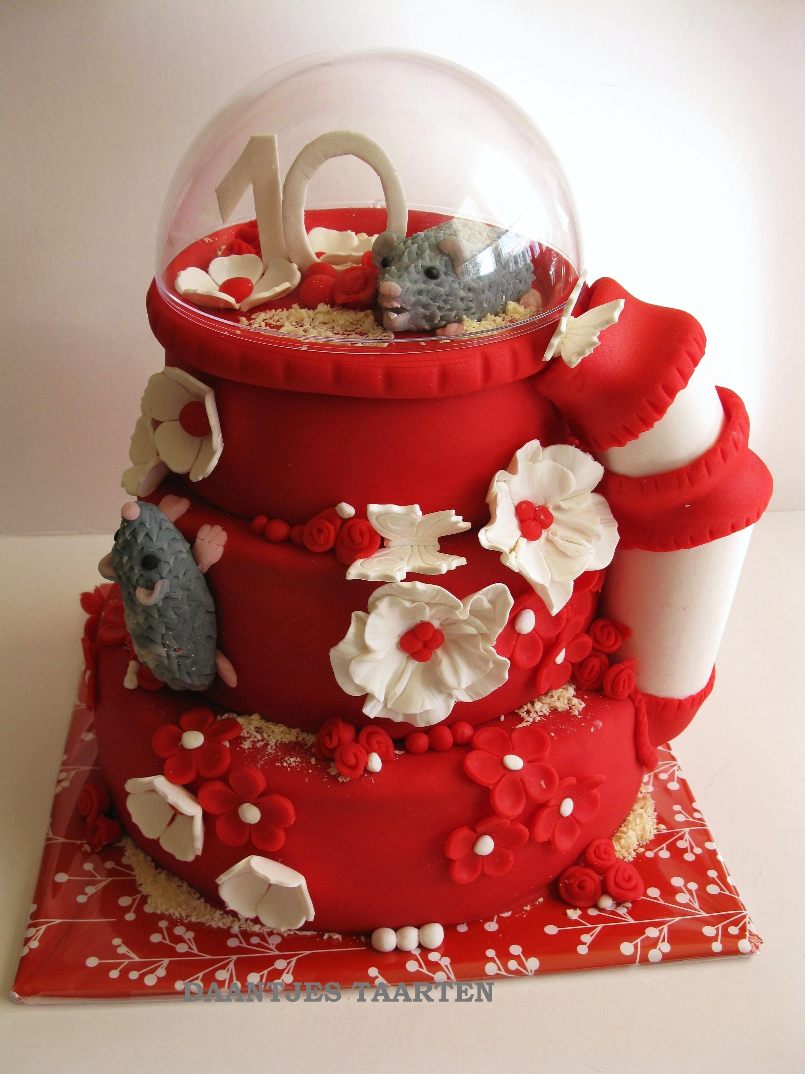 Hamster Cake Cakes Gallery Pinterest Cake Cake Cookies - Hamster birthday cake
