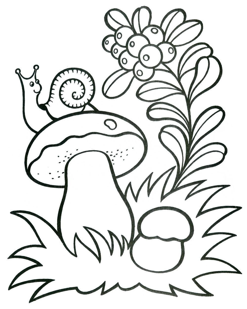 fungus coloring pages - photo#42