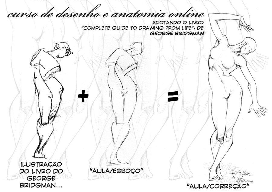 CURSO DE DESENHO E ANATOMIA by sebastiaoseabra.deviantart.com on ...