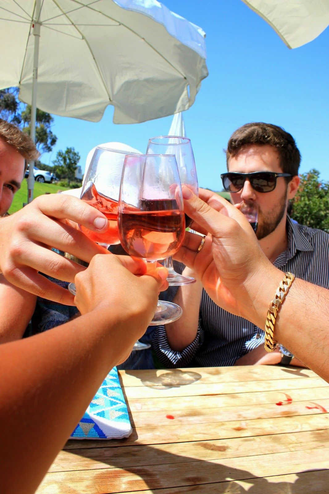 Cheers! - A hectic wine tour in McLaren Vale | The Chronicles of Wanderlust
