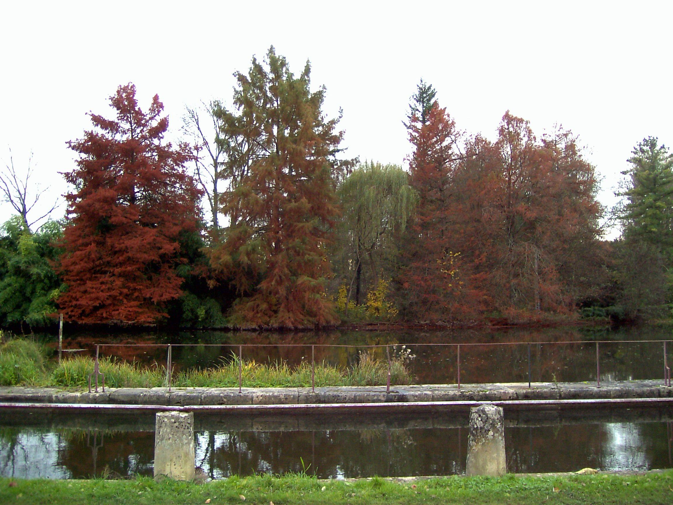 Le canal à l'automne près des Rochers du Saussois #rochers saussois