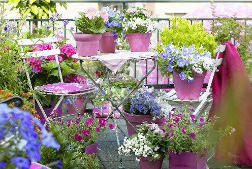 turning lawn into beautiful flower garden search terms beautiful