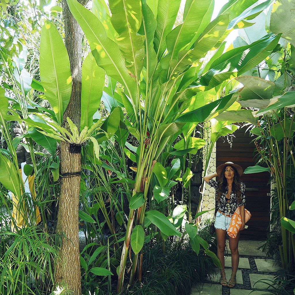 Mini Jungle in the heart of Seminyak  image by our guest @piamuehlenbeck