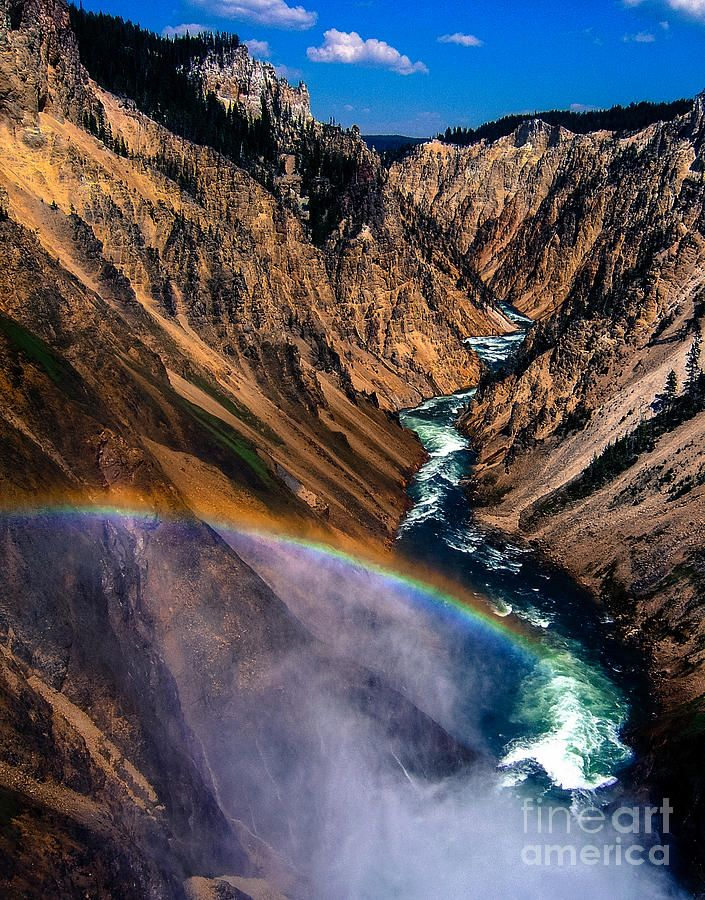 Rainbow At The Grand Canyon Yellowstone National Park