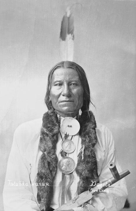 The Lakota Indian known as Buffalo Bulls Ghost 1884. | Tattooss ...