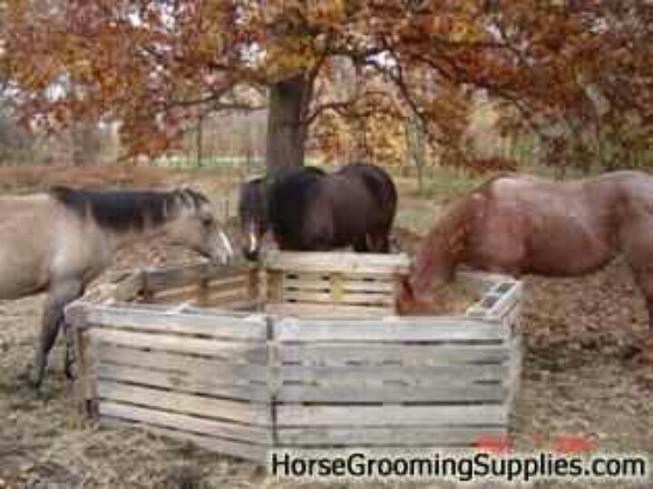 Pin By Chelsea Kaminski On My Farm Barn Ideas Hay