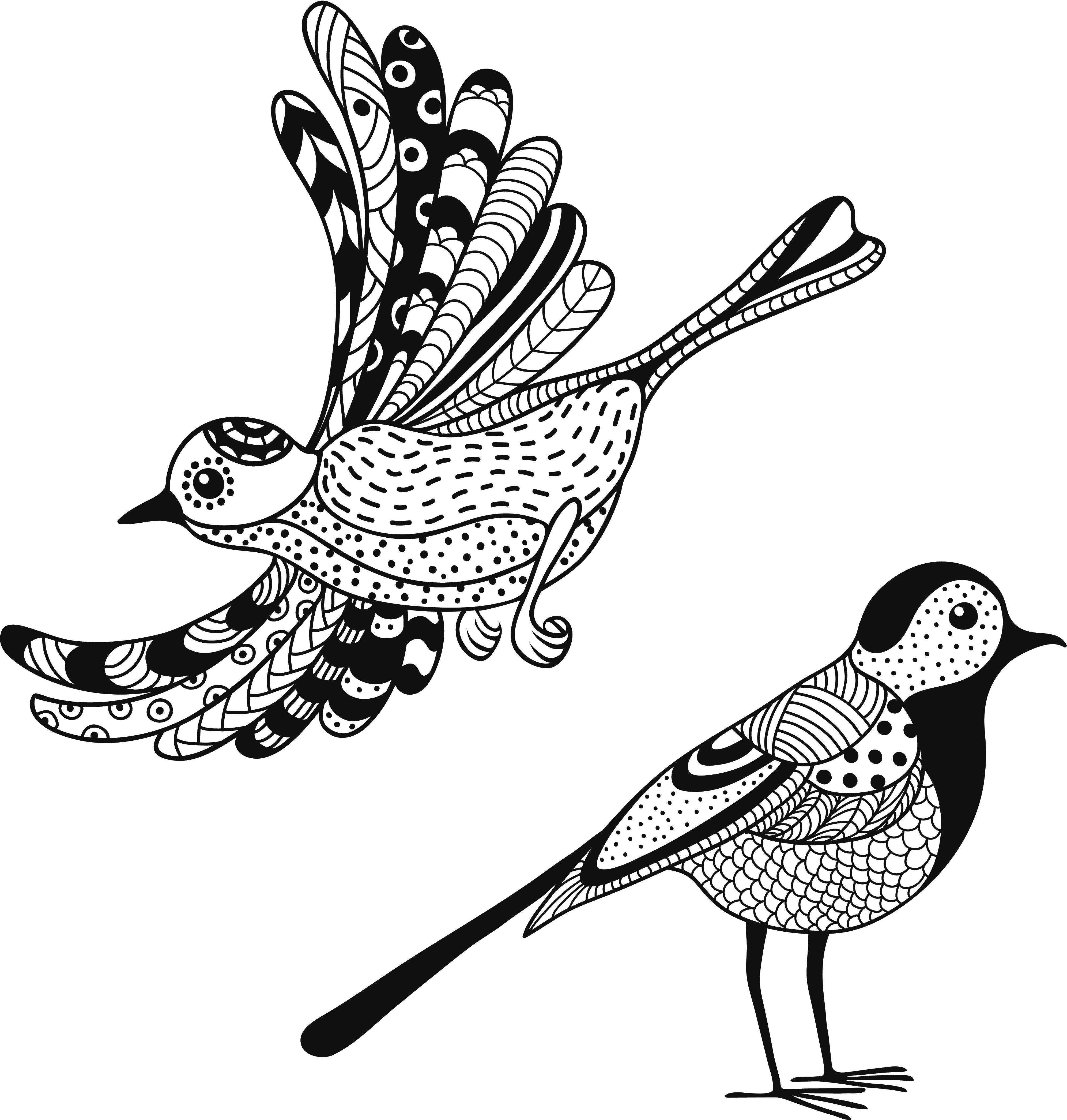 Графический картинки птицы