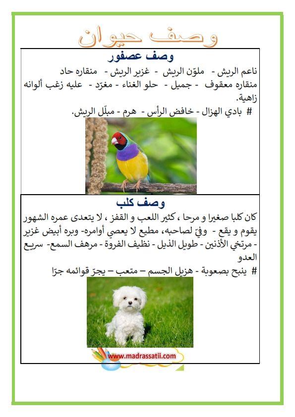 وصف حيوان وصف عصفور وصف كلب وصف حمار وصف غزال Madrassatii Com Arabic Alphabet Learning Arabic Arabic Worksheets