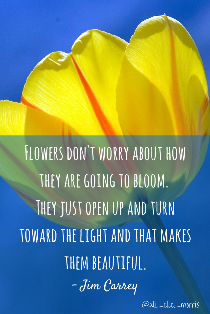 Flowers Dont Worry About How To Bloom The Just Open Up And Turn