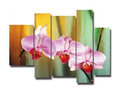 cuadros para la sala con bonitas flores