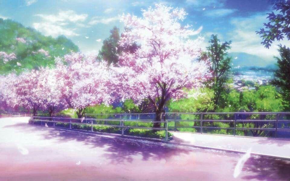Sakura Anime Backgrounds Wallpapers Anime Scenery Wallpaper Anime Scenery