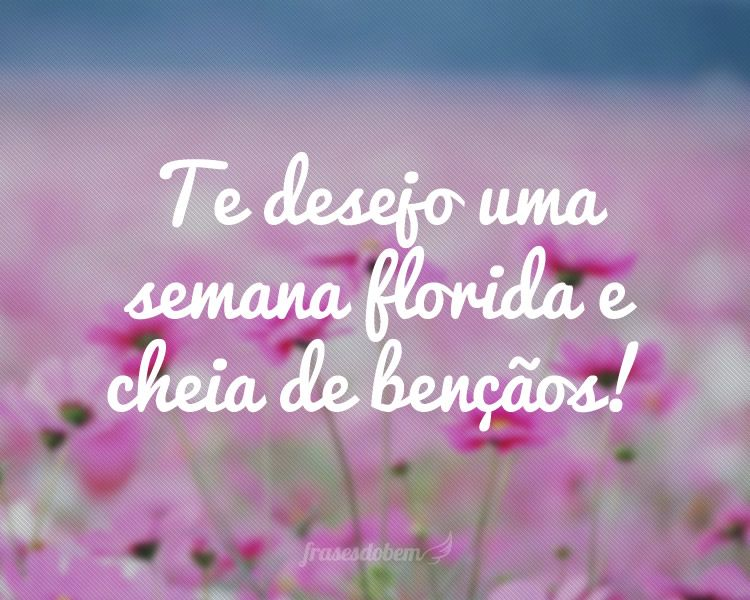 Desejo Uma Semana Abençoada A Todos: Te Desejo Uma Semana Florida E Cheia De Bençãos
