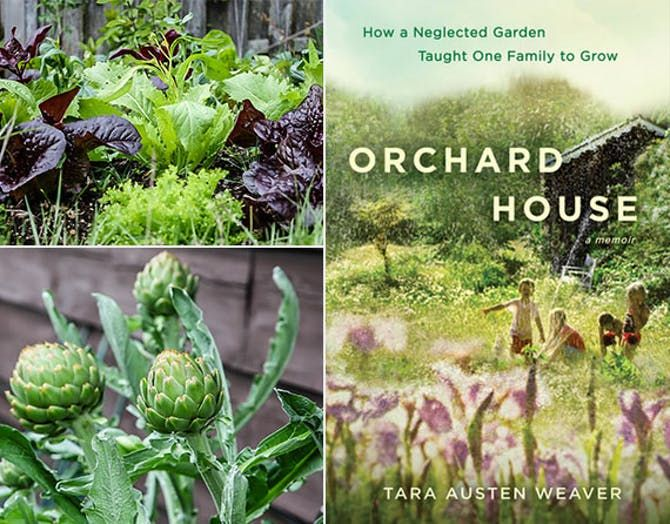 Https://www.tastingtable.com/cook/national/how To Start Edible Garden Tara Austen Weaver Plants To Grow?utm_mediumu003demailu0026utm_sourceu003dnationalu0026utm_campaignu003d  ...