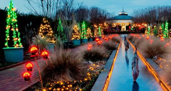 Botanical Gardens Christmas Lights Charlotte Nc