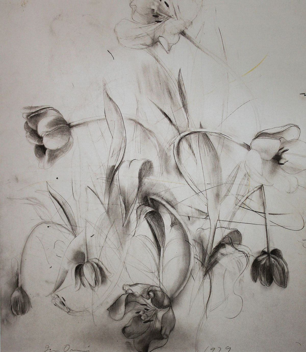 Jim dine i love this jim dine drawing the flowers look like they