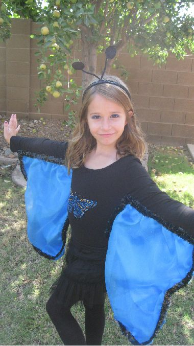 Share Photos : Holidays:Homemade Butterfly Costume