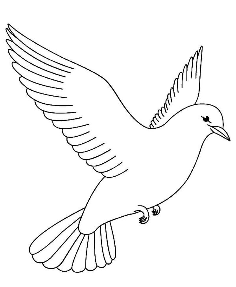Printable Bird Coloring Pages Photo Bird Coloring Pages with Birds ... | 975x800
