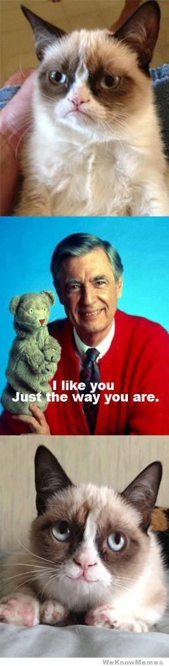 Mr Rogers meets Grumpy Cat