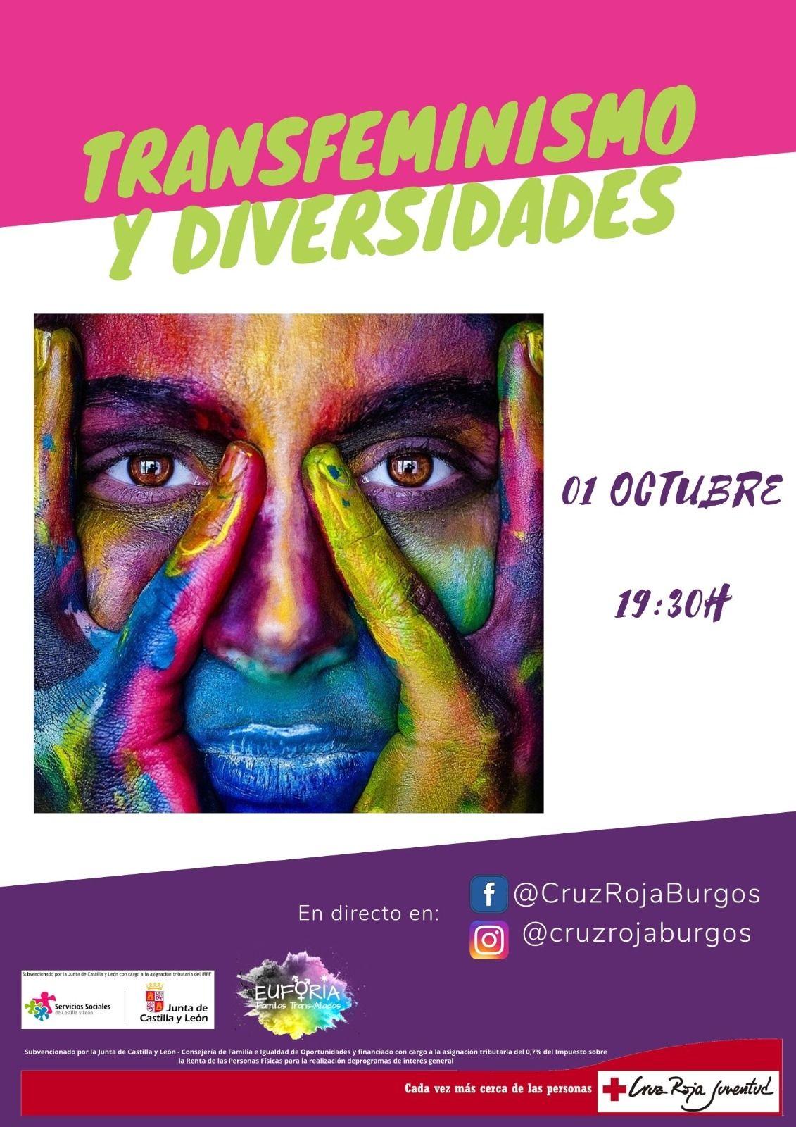 Transfeminismo y Diversidades - Facebook e Instagram